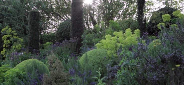 pavord-garden5